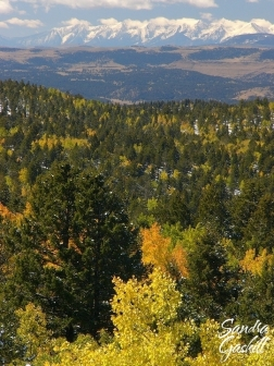 View from Mueller State Park