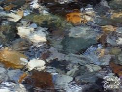 Blurred Clarity
